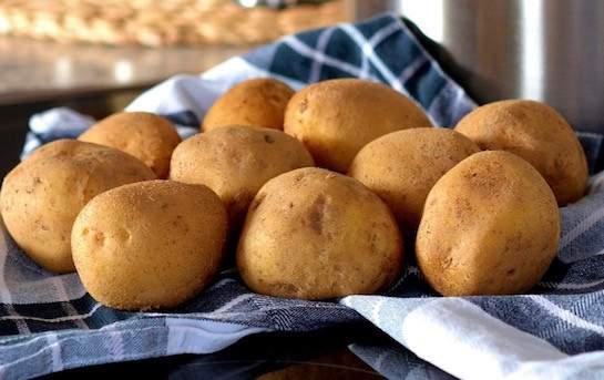 Pommes de terre Annabelle BIO (ferme)