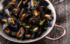 """""""De Bouchot"""" Premium Mussels"""