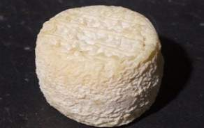 """Chavignole Crottin"" goat cheese"