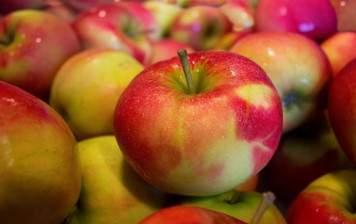 Pommes Galiwa BIO