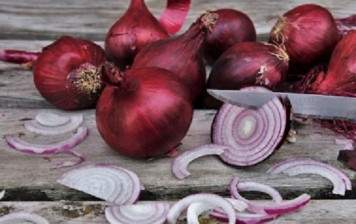 Red Onions BIO from Geneva